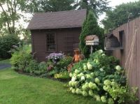 Best 20+ Shed Landscaping ideas on Pinterest | Outdoor ...