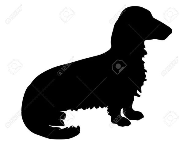 longhaired dachshund silhouette