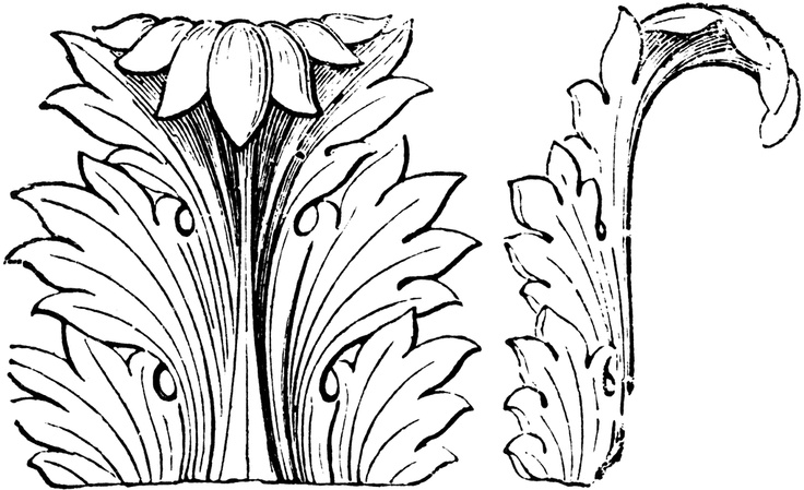 55 Best Images About Acanthus Leaves