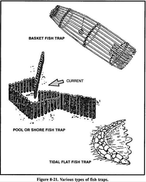 25+ great ideas about Survival Fishing on Pinterest
