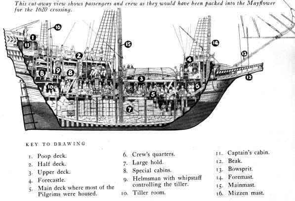166 best Ship Schematics, Cutaways, & Diagrams images on