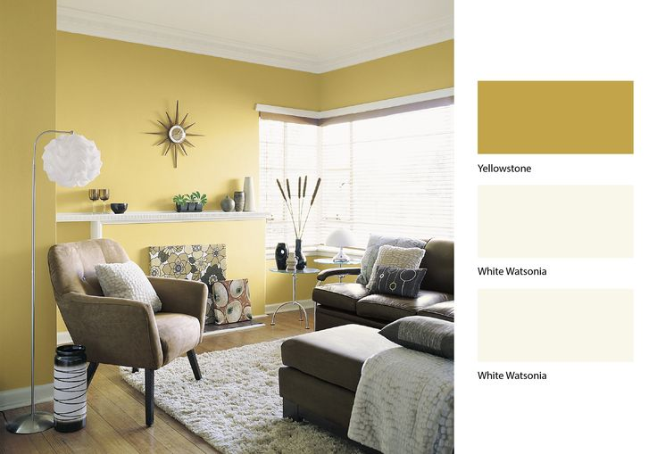 best color schemes for living room ideas decorating walls paint colour trends on pinterest | discover the ...