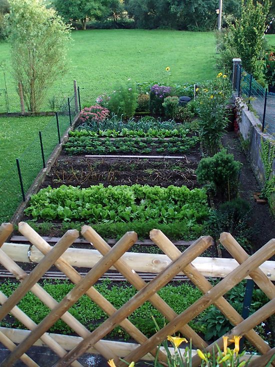 23 Best Images About Raised Beds On Pinterest Raised Bed Gardens