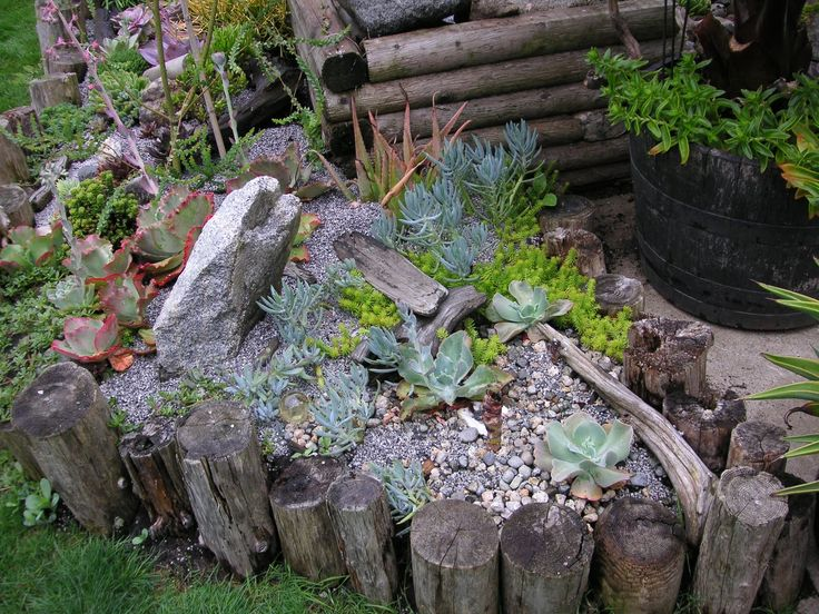 70 Best Images About Driftwood Garden Accents On Pinterest