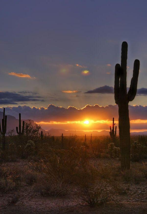 25 best ideas about Desert sunset on Pinterest Desert