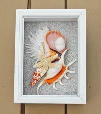 BEACH DECOR seashell collage shadow box, orange and white ...