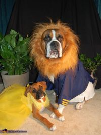 17 Best ideas about Dog Halloween Costumes on Pinterest ...