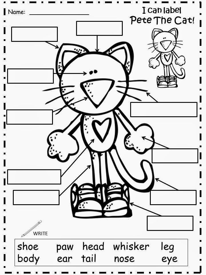 48 best Pete the Cat (Rocking in my School Shoes) images
