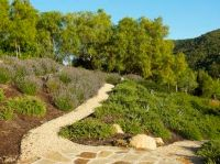 18 best images about Sloping Yard on Pinterest | Terraced ...