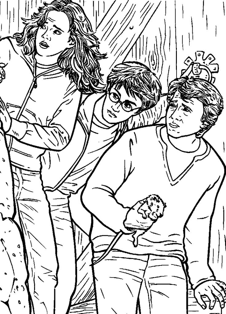 210 best images about harry potter coloring pages on