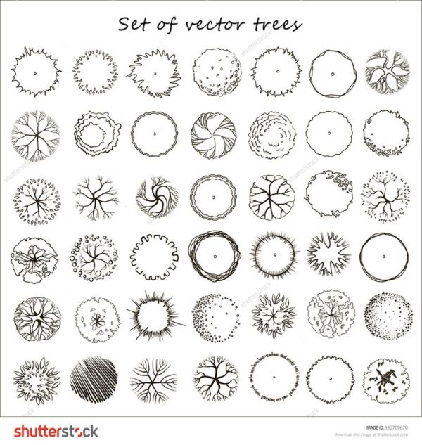 tree plan silhouette vector - buscar