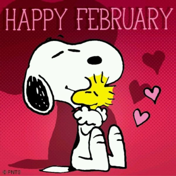 105 best images about February on Pinterest February 3