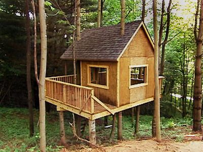 10 Best Images About Tree House On Pinterest A Tree Kid And The