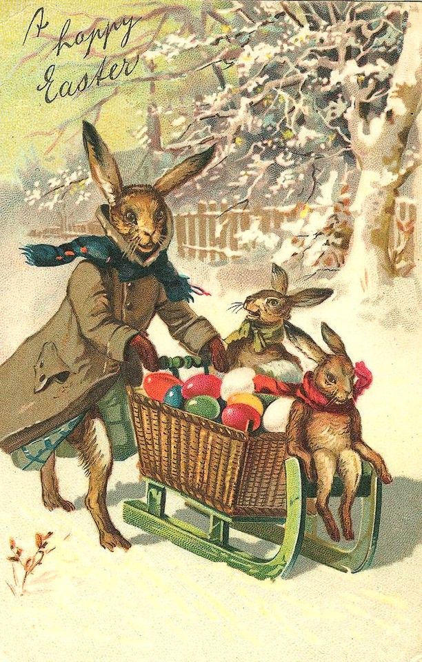 Antique postcardIts cold out there says the Bunny