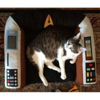 84 best images about Cats wif Star Trek or Star Trek Cats ...