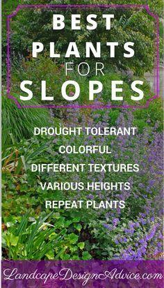 25 Best Ideas About Landscaping A Hill On Pinterest Hill Garden