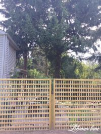 1000+ ideas about Lattice Fence on Pinterest | Fencing ...