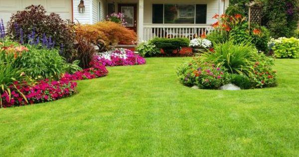 front yard plants beautiful design