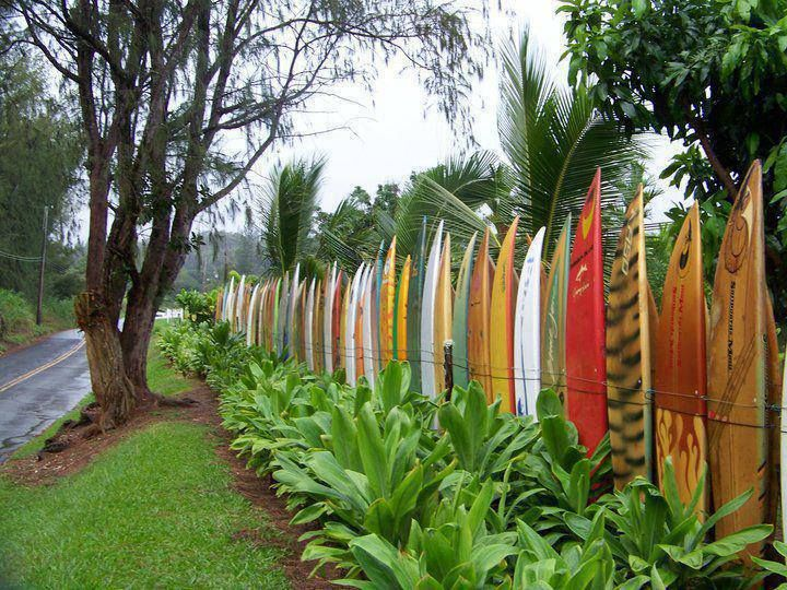 92 Best Images About Crazy Fence Ideas On Pinterest Gardening
