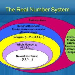 Venn Diagram For Real Number System Dichotomous Key 27 Best Images About Numbers On Pinterest | Graphic Organizers, Activities And Integers