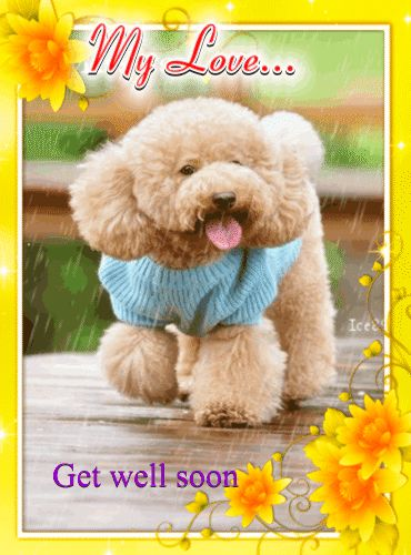 1000 images about Get Well Quotes on Pinterest Get well