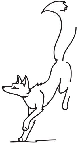 1000+ ideas about Fox Silhouette on Pinterest