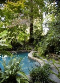 Best 25+ Backyard paradise ideas on Pinterest