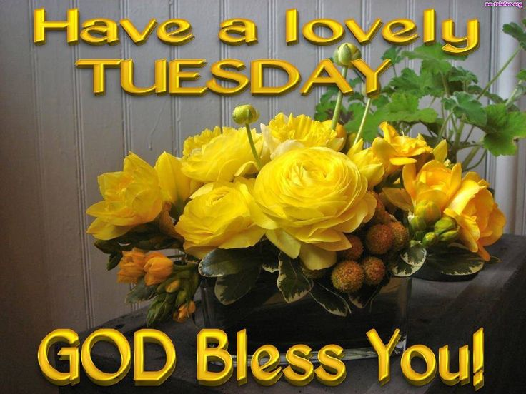 The Yellow Wallpaper Jennie Quotes 1000 Images About Tuesday On Pinterest