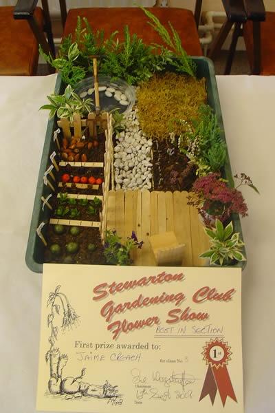 17 Best Images About Shoe Box Garden On Pinterest Gardens Beach
