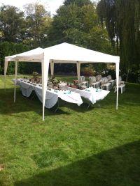 tent set-up for small backyard wedding | DIY Rustic ...
