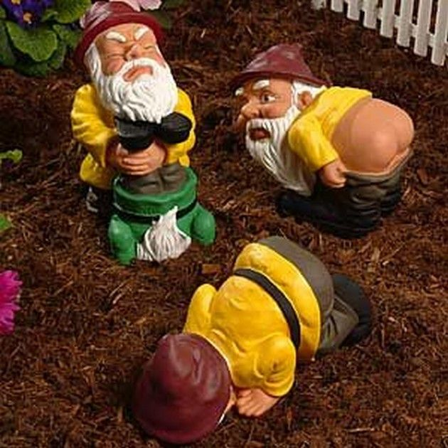 Best 25 Funny Gnomes Ideas On Pinterest