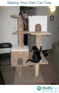 1000+ images about DIY for Pets on Pinterest | Cats ...