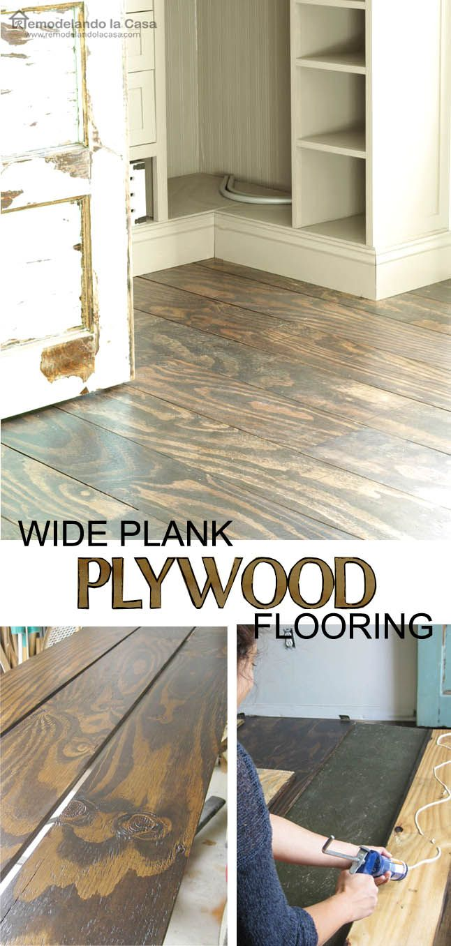 DIY  Plywood Floors  Stains Basement ideas and The floor