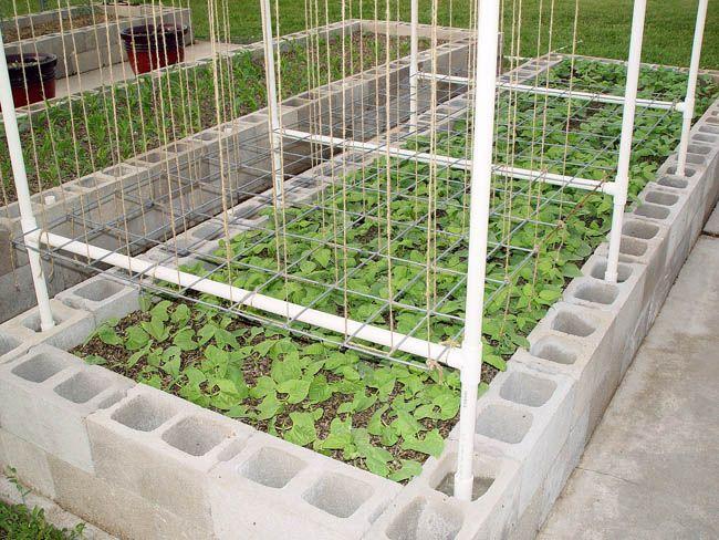 Garden Trellis Ideas 10 Of The Best