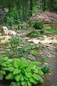 17 Best ideas about Wooded Backyard Landscape on Pinterest