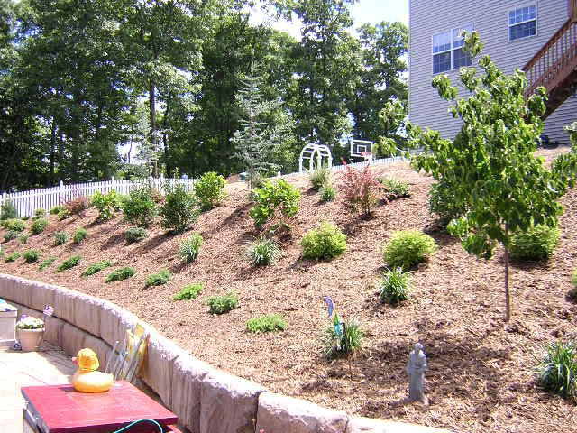Best 25+ Backyard hill landscaping ideas on Pinterest
