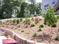 Best 25+ Backyard hill landscaping ideas on Pinterest ...