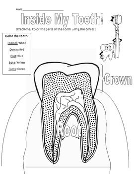 54 best images about Dental Coloring Pages for Kids on