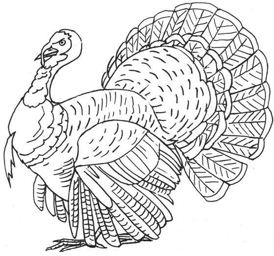 17+ best images about Thanksgiving Embroidery Patterns on