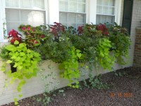 Top 134 ideas about Hanging Gardens on Pinterest | Cordoba ...