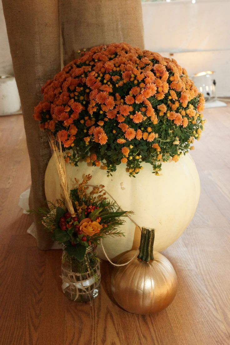 Fall Flowers And Pumpkins Wallpaper Fall Wedding Decor Large Cleaned Out Pumpkin With A