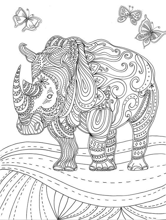 1000+ images about coloring hippo, rhino on Pinterest