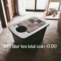 DIY litter box made simple and affordable for larger cats ...