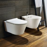 9 best images about toilets on Pinterest | Wall mount ...