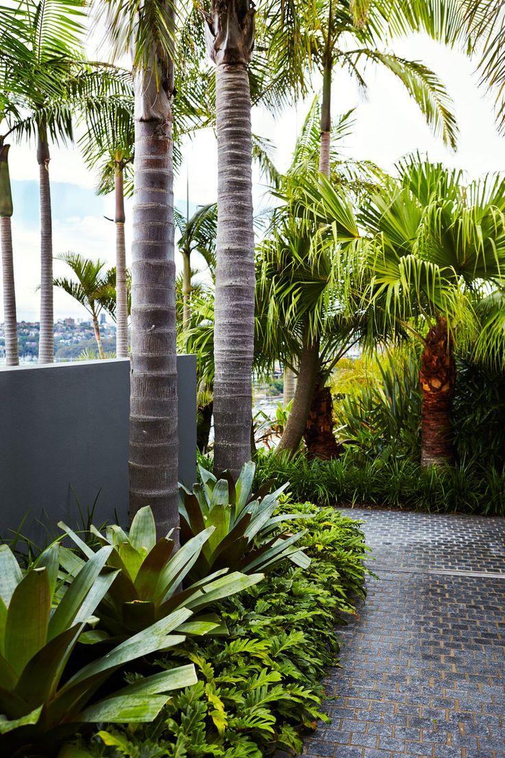 25 best ideas about Tropical garden design on Pinterest