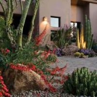 1000+ images about Desert landscaping ideas on Pinterest ...