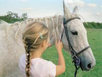 25+ best Horse Mane Braids ideas on Pinterest | Horse hair ...