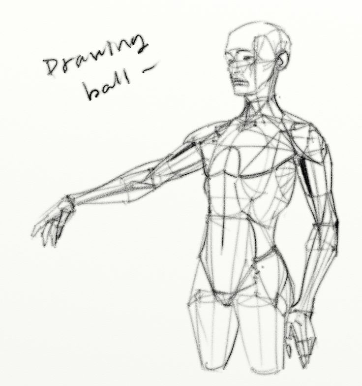 462 best images about Figure Drawing / Torso on Pinterest