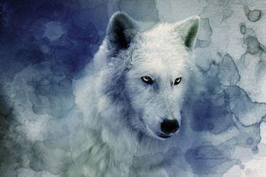 mythical creatures wolf creature mythological animal wolves mystical mythology deviantart forest nice heads greek