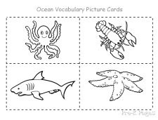 17 Best images about Kindergarten Under the sea theme on